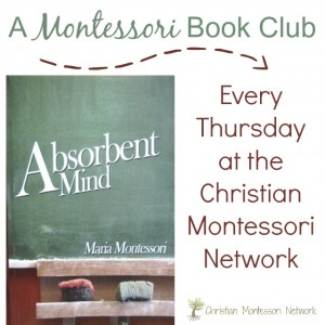 The Absorbent Mind: CMN Advanced Bookclub
