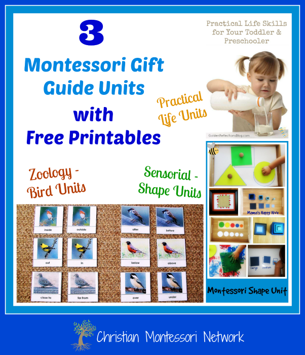 Enjoy 3 beautiful Montessori gift guide units with free printables for your child to enjoy. The units are the study of birds, shapes, and practical life.  - ChristianMontessoriNetwork.com