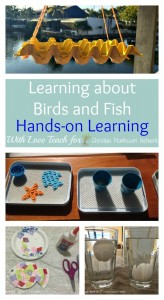 Learning about Birds and Fish with Hands-on Learning
