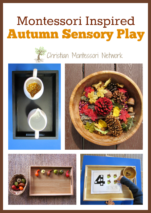 A fun collection of Montessori inspired Autumn sensory play activities for toddlers and preschoolers to enjoy! - ChristianMontessoriNetwork.com