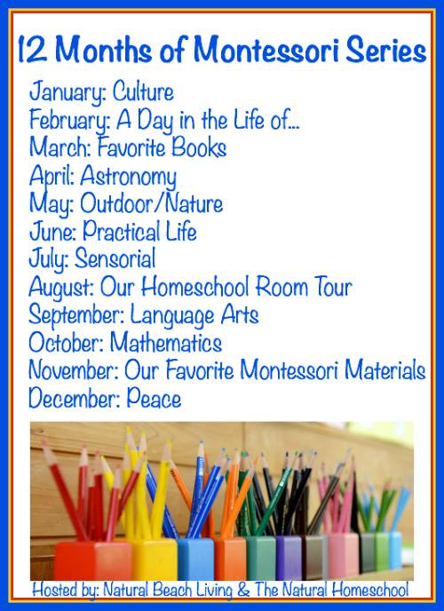 12 months of Montessori series 2016.