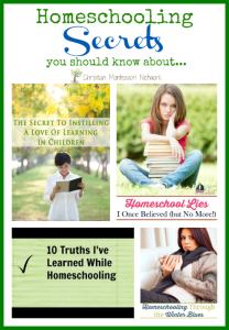 Homeschooling Secrets {Learn & Play Link Up}