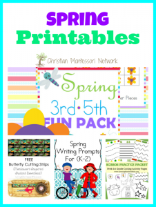 Spring Printables {Learn & Play Link Up}