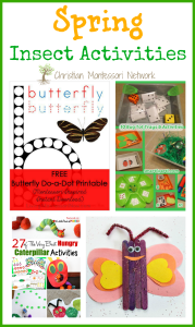 Spring Insect Activities {Learn & Play Link Up}