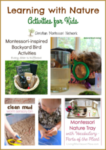 Learning with Nature Activities {Learn & Play Link Up}