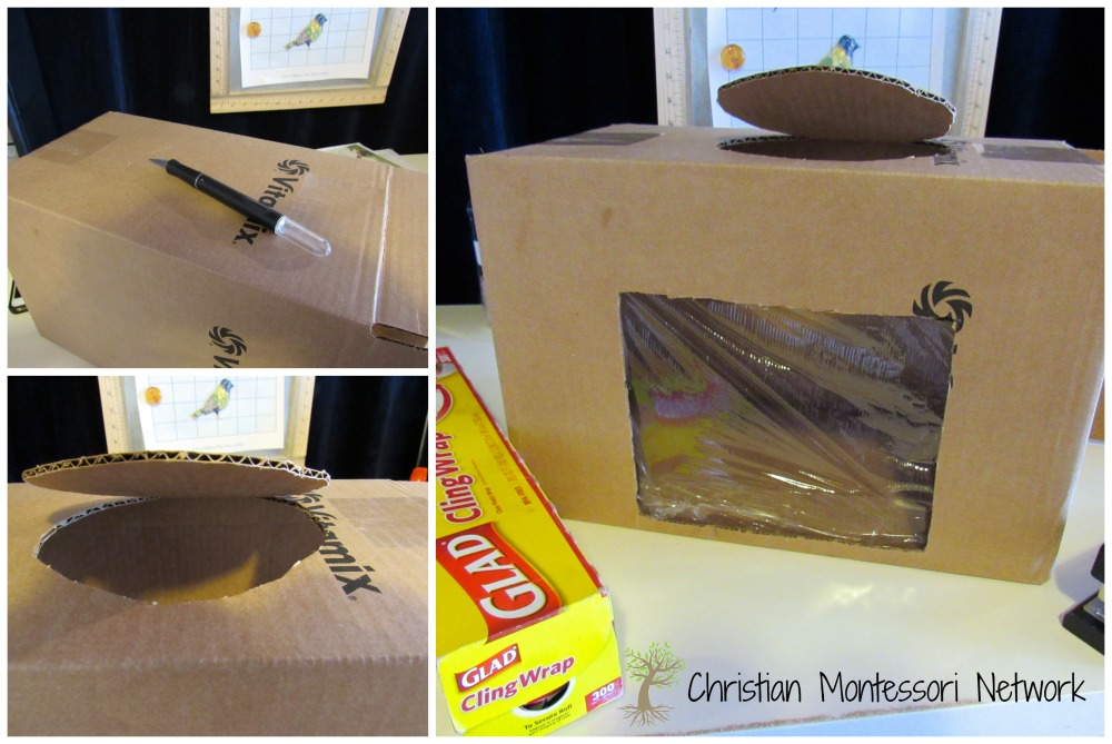 Lion's Den Box - ChristianMontessoriNetwork.com