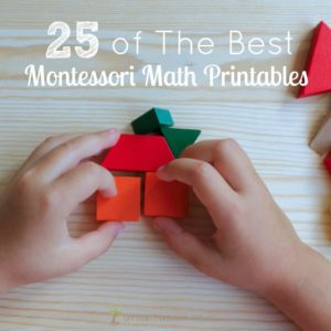 25 of The Best Montessori Math Printables