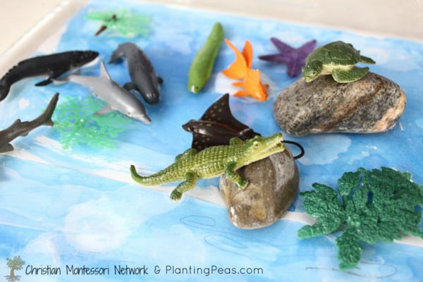 Montessori Inspired Kids Bible Activities - water table (planting peas)