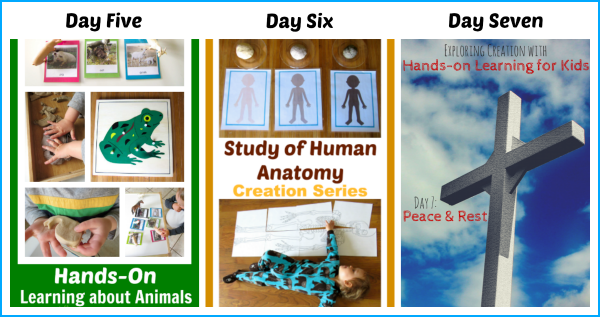 Days of Creation - www.christianmontessorinetwork.com