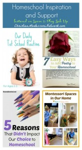 Homeschool Inspiration and Support – Learn & Play Link up #18