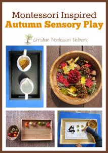 Montessori Inspired Autumn Sensory Play